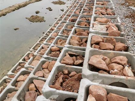 安装wan成bing放置石头的护po生态kuang